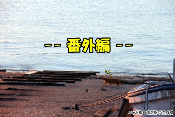 ニャポ旅3 南房総 浜金谷編