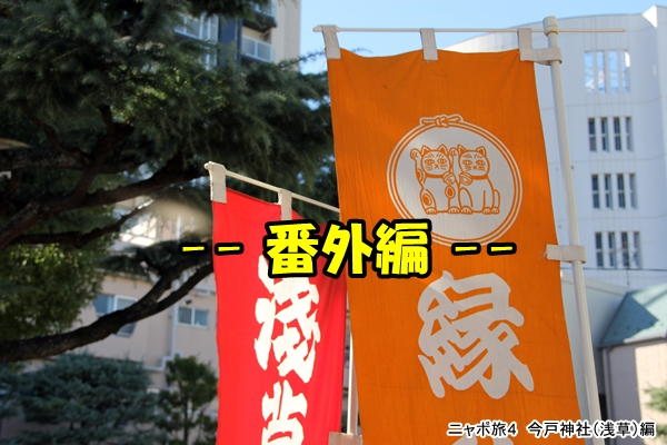 ニャポ旅4 今戸神社へ番外編