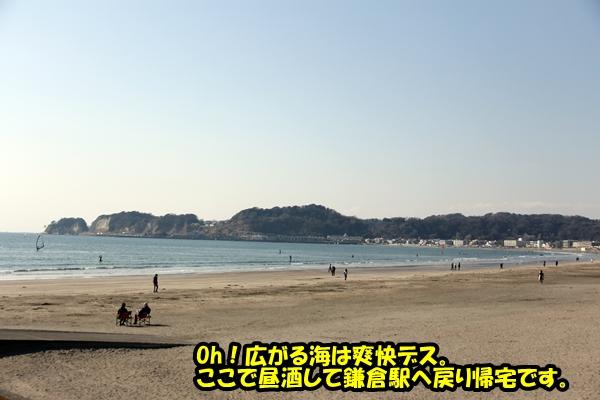 ニャポ旅6 鎌倉 光明寺編