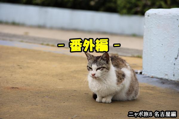 ニャポ旅8 名古屋番外編