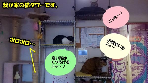 ニャポハウス 我が家の猫タワー