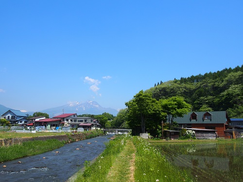 taueowaru215526.jpg