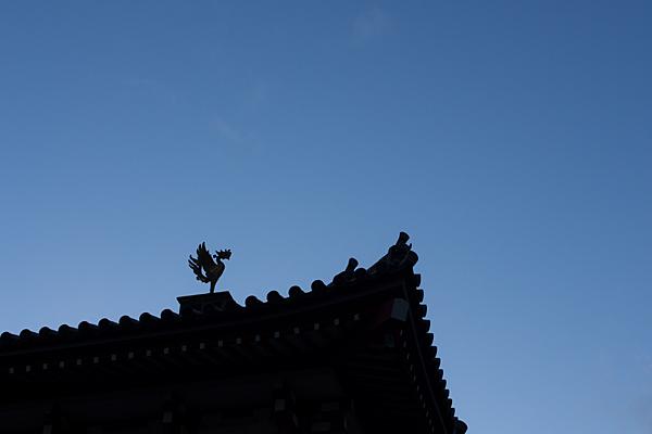 護国院屋根の鳳凰