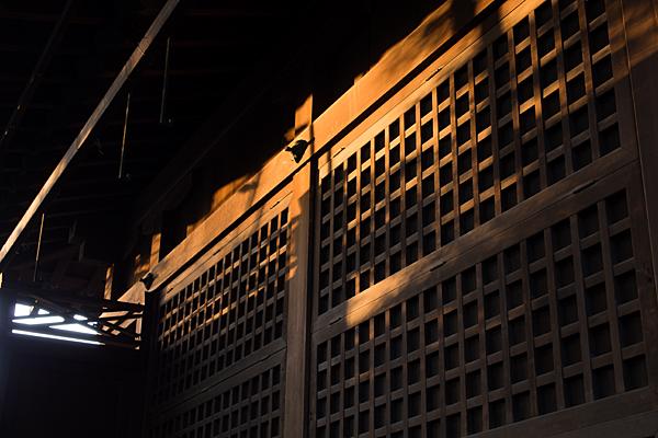 御器所八幡宮西日を浴びる拝殿