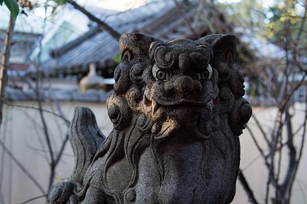 尾陽神社-8