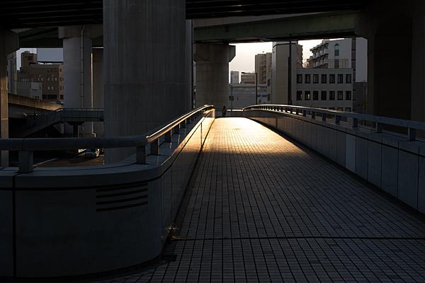 光風景-10