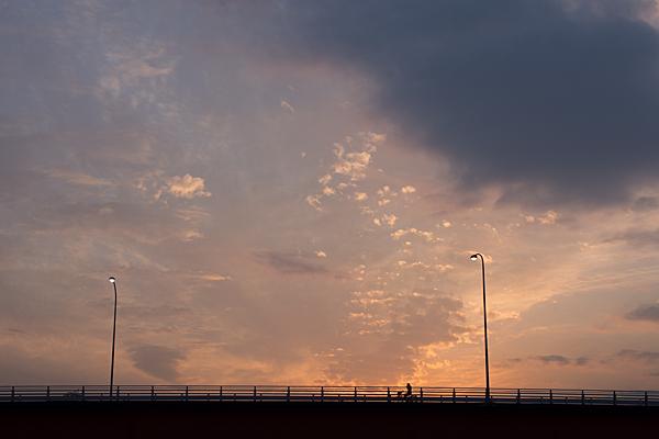 道ばた風景-11