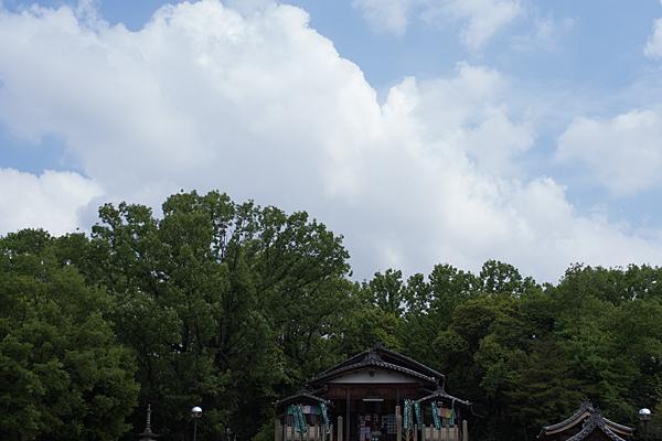 興正寺-11