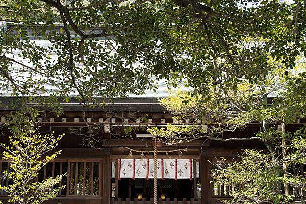 三輪神社-2