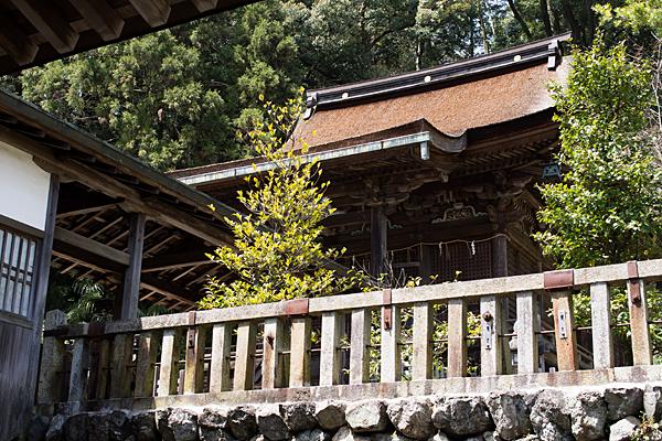 三輪神社-3