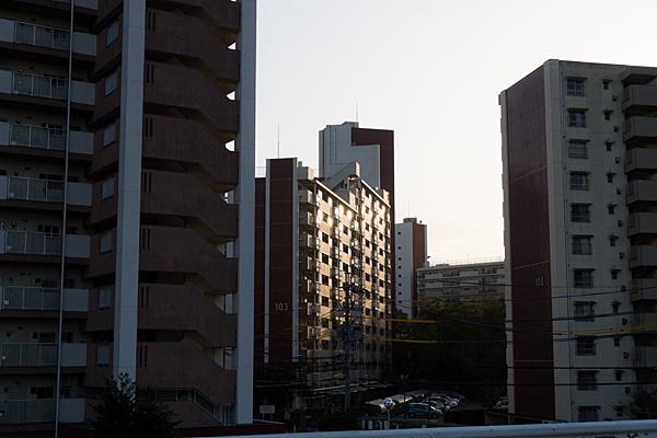 道行き-6