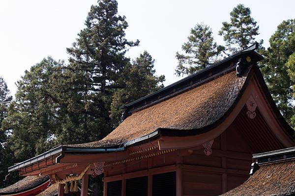 日吉神社-5
