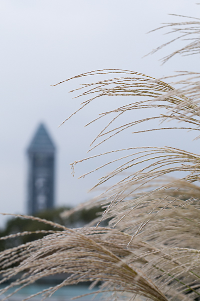 東山植物園-3