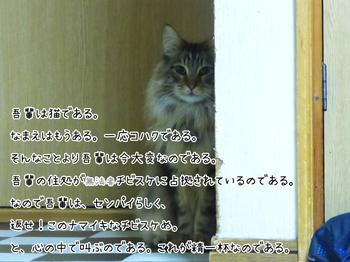 20150410007.jpg