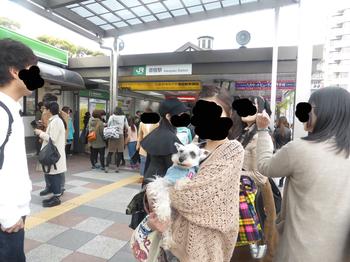 20150412001.jpg
