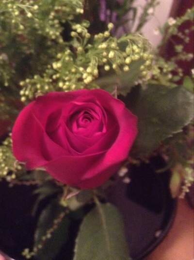 fc2blog_20150129190456c26.jpg