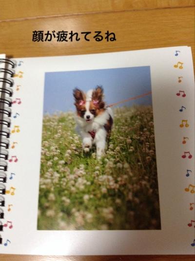 fc2blog_2015062621514999f.jpg