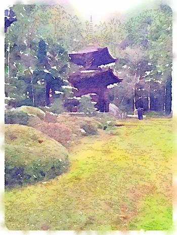 日根神社をWaterlogueで加工