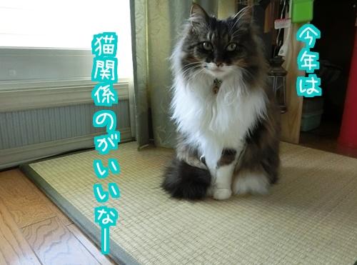 ぷれ1.jpg