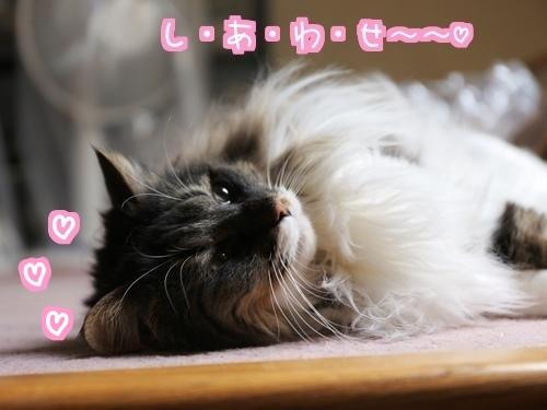 お眠にぃ4.jpg
