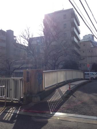 2015東中野桜開花南小滝橋