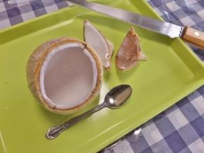 ヤングココナッツ♪果汁を飲んだら、のこぎりで輪切りにして果肉をすくえる口を作り食べてみます♪2015.04.14