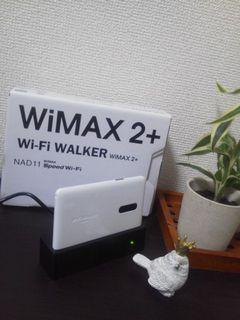 wimax2201502.jpg