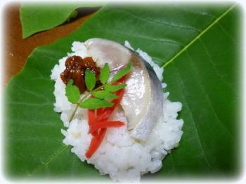 ほうば寿司3
