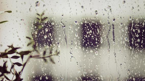 August Rain Ubuntu 壁紙