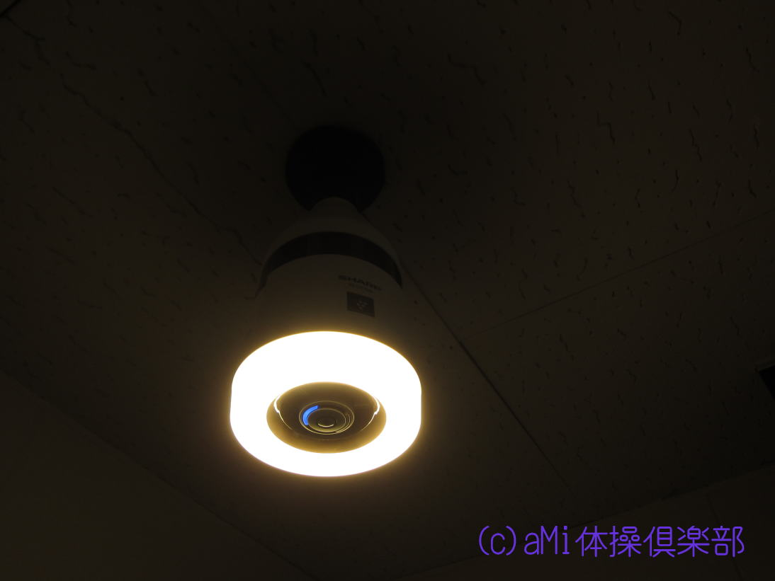 IMG_5308-1.jpg
