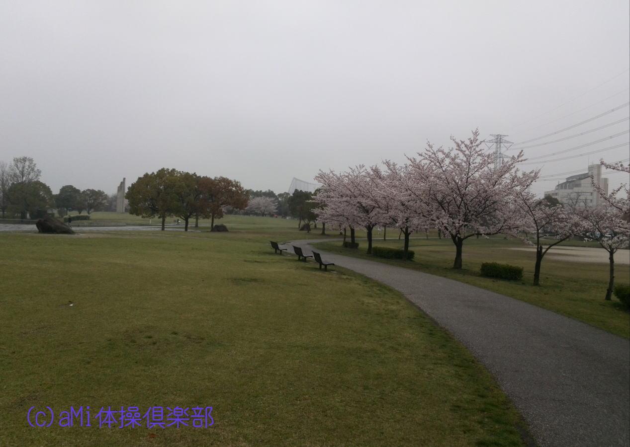 KIMG0038-1.jpg