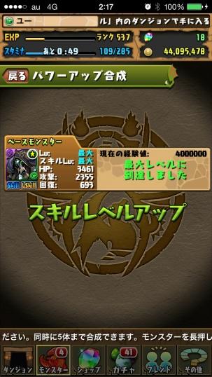IMG_2374.jpg