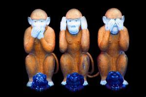 monkey-557586_640_convert_20150116004135.jpg