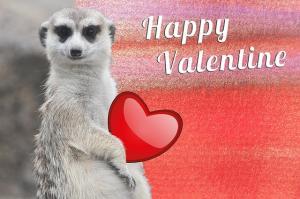 valentine-617604_640_convert_20150213223611.jpg