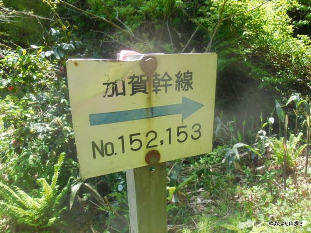 DSCN6953.jpg